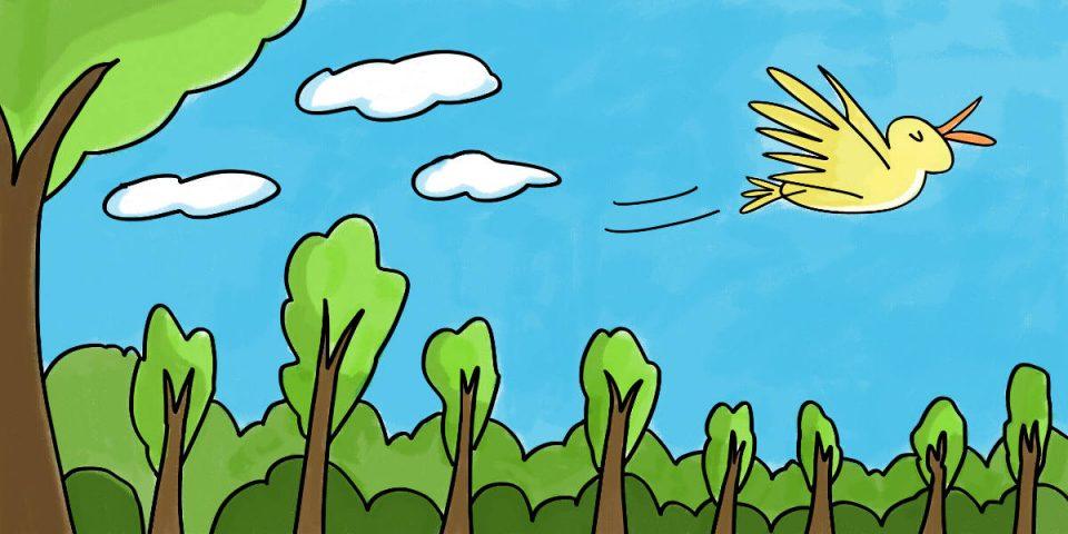 And away he flew (Kindergarten)